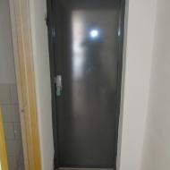 Steel Door 10